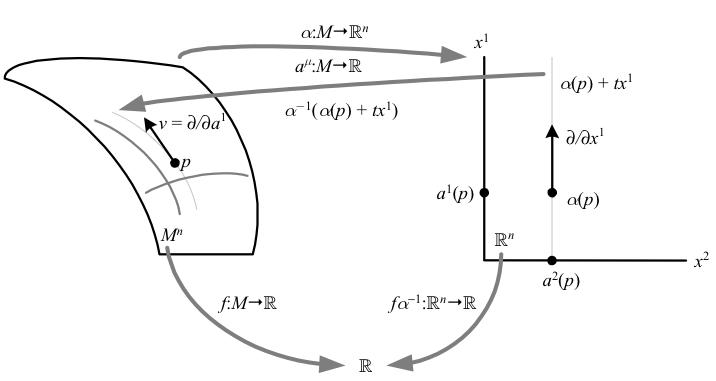 33.tangent-vectors