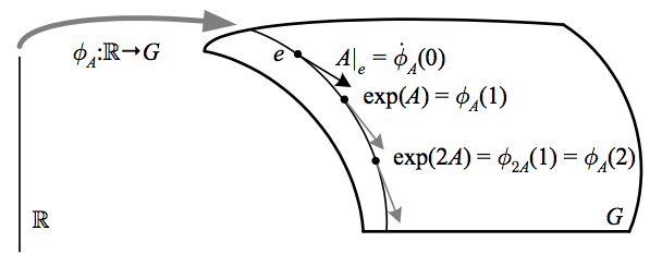 53.exponential-map-v3